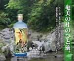 奄美の杜.jpg